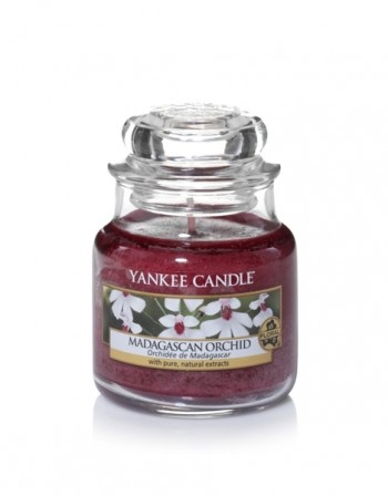 madagascan-orchid-giara-media-yankee-candle
