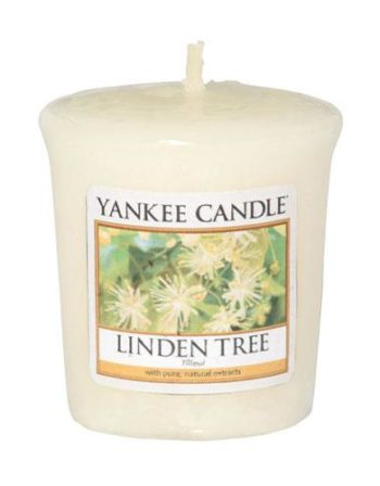 linden-tree-sampler2286448
